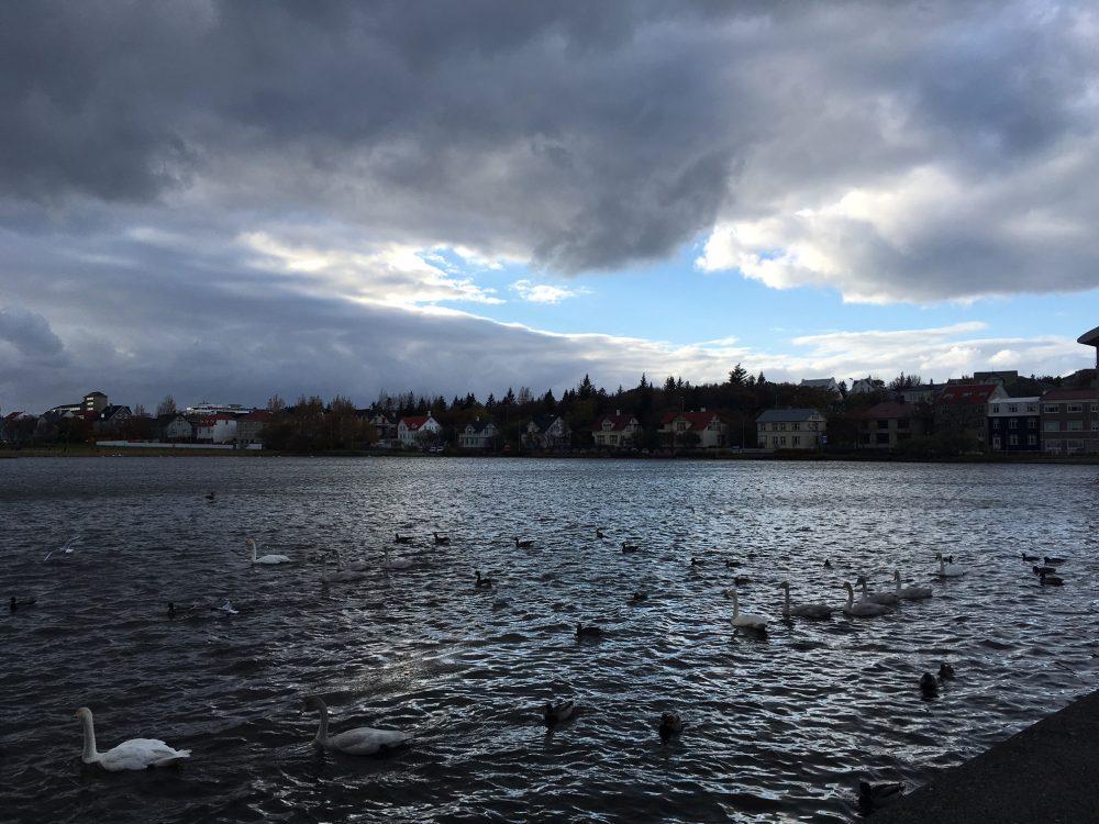Reykjavik city Iceland