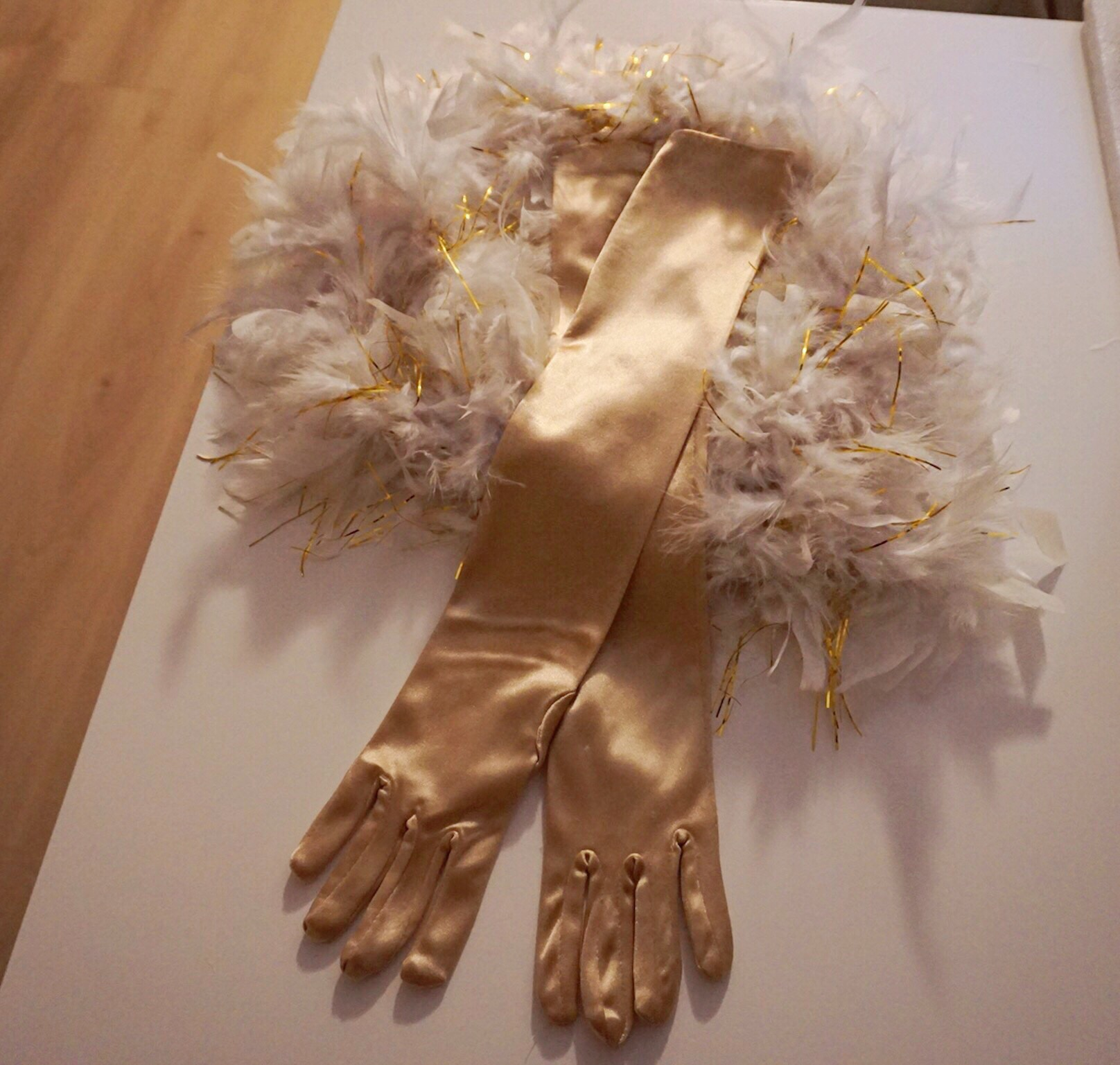 Burlesque Boa and gloves
